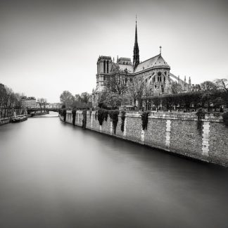 D1063D - Dragt, Wilco - Notre Dame II