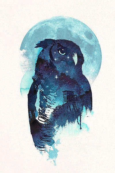 F676D - Farkas, Robert - Midnight Owl