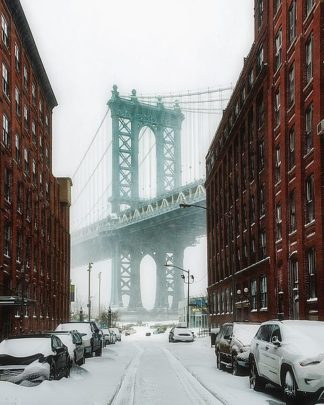 G949D - Getty, Bruce - The New York Blizzard