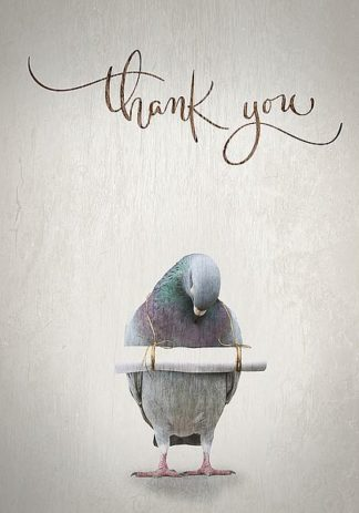IN99209 - TypeLike - Thank you
