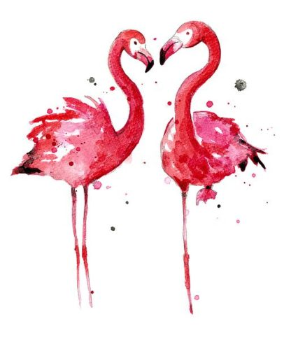 N335D - Nagel, Sam - Pink Flamingos