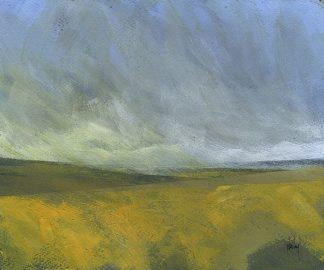 B3599D - Bailey, Paul - Open Moor