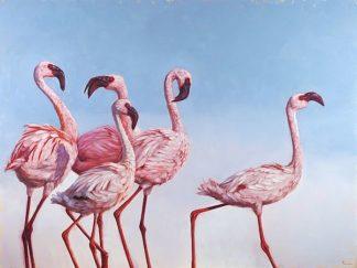 H1459D - Heffernan, Lucia - Pink Ladies