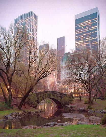 K2638D - Klug, Alan - Central Park, NYC