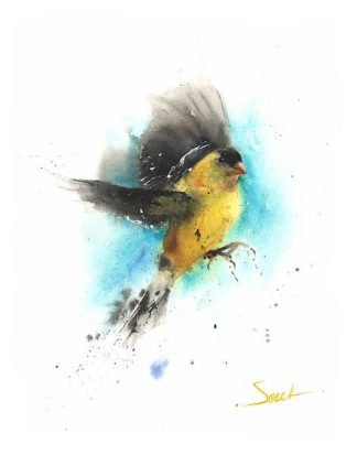 S1640D - Sweet, Eric - Goldfinch