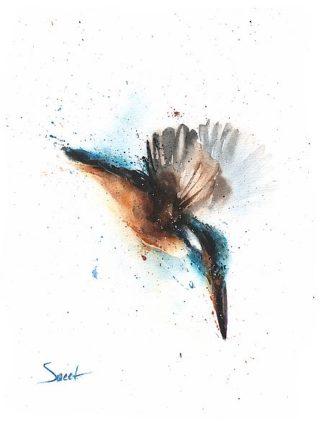 S1641D - Sweet, Eric - Kingfisher