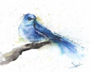 S1648D - Sweet, Eric - Bluebird