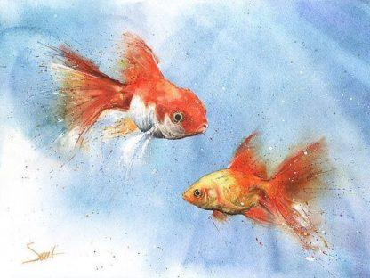 S1652D - Sweet, Eric - Goldfish