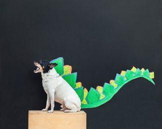 S1702D - Sabo, Susan - Dino Dog