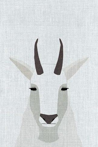 A522D - Annie Bailey Art - Mountain Goat