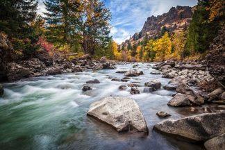 B3617D - Broom, Michael - Teton River Rush