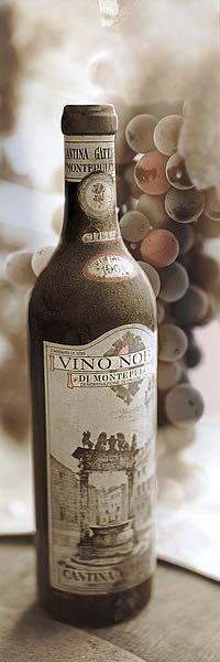 B3652D - Blaustein, Alan - Montepulciano Vineyard #1