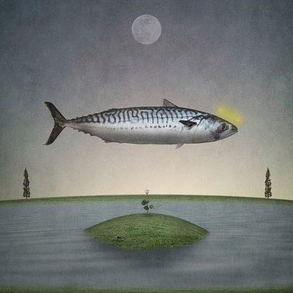 N353D - Noblin, Greg - Holy Mackerel