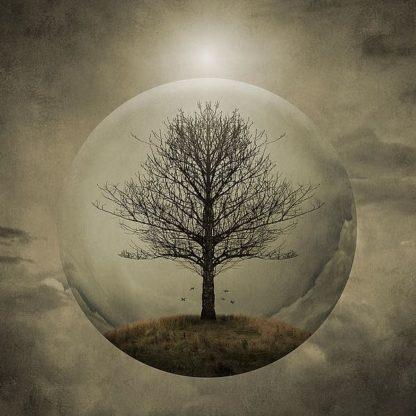 N368D - Noblin, Greg - Tree of Life