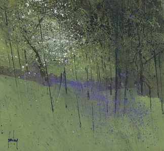 B3674D - Bailey, Paul - Bluebells