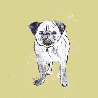 C1226D - Christine, Niya - Super Cute Pug
