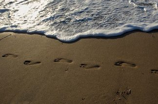 W987D - White, Lynda - Footprints