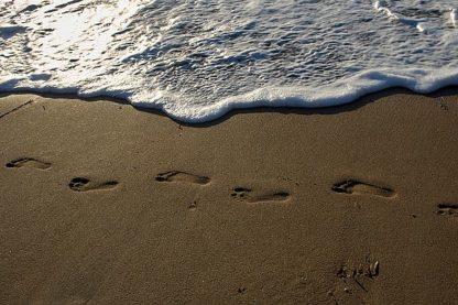 W987D - White, Lynda - Footprints