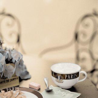 Paris Cafe de Jardin