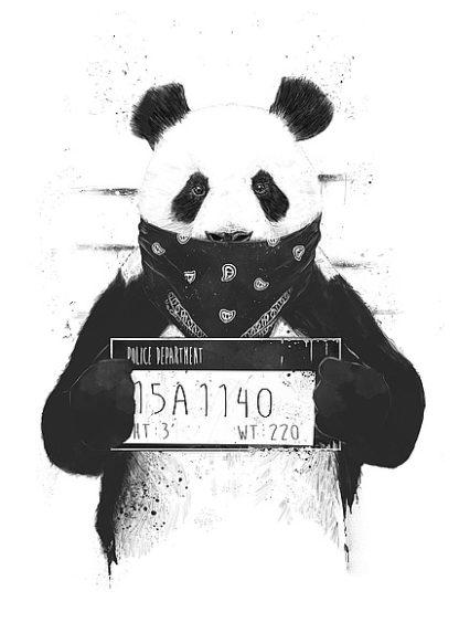 S1299D - Solti, Balazs - Bad Panda